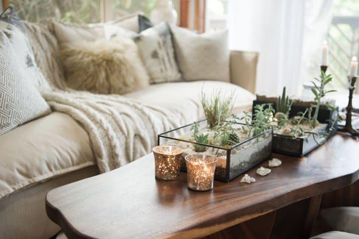 тераріум для рослин і квітів