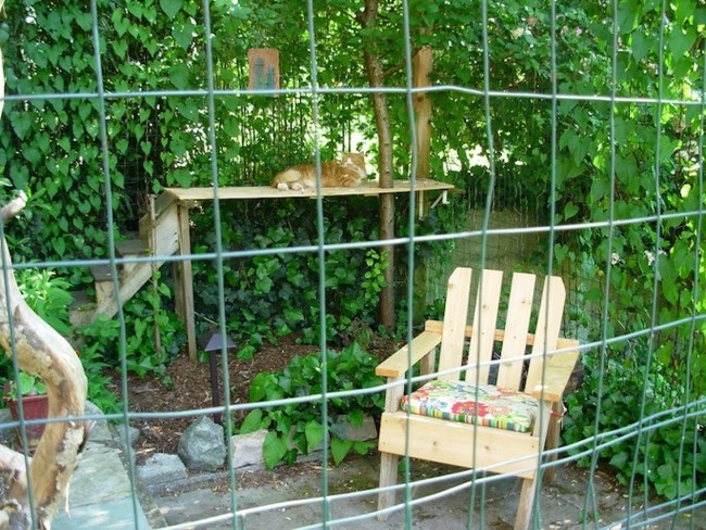 patio-for-cats-02