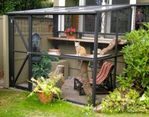 Необыкновенные вольеры для кошек во внутреннем дворике