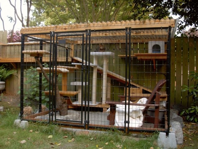 patio-for-cats-05
