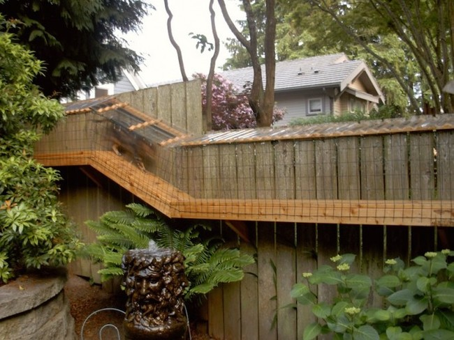patio-for-cats-07