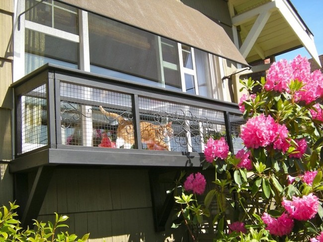 patio-for-cats-08