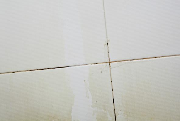 Ремонт ванной: как очистить швы между плиткой от плесени?